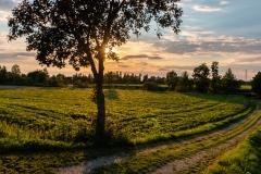 Buttendorf Sonnenuntergang