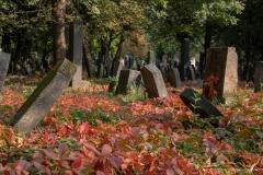 Jüdischer Teil des Zentralfriedhofs