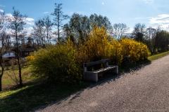 Donaupromenade