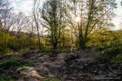 Steinbrunngasse nebst Irrenfeld