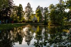 Teich IST-AUSTRIA