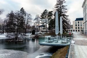 IST-Teich zugefroren
