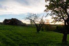 fotogalerieKierlingtal-9877