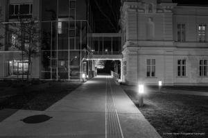 Nachtspaziergang IST-AUSTRIA
