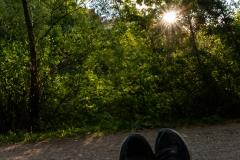 Relax im Auwald