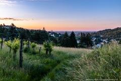 Guten Morgen Klosterneuburg