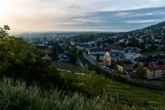 Ausblick vom Weinberg