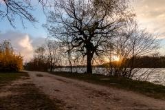 Donaualtarm